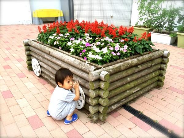flower0617