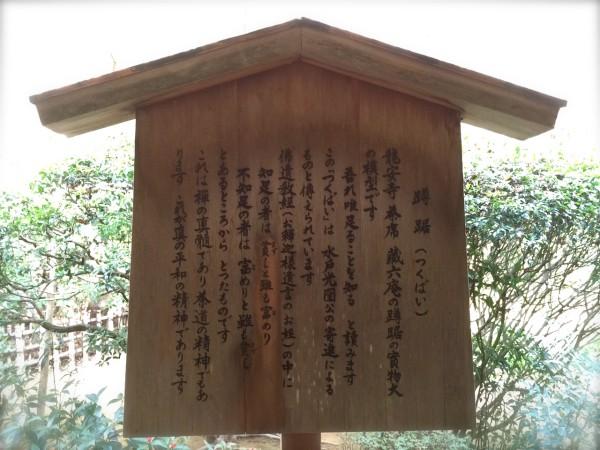 kyoto0129_7